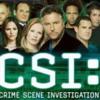 CSI (All Shows)
