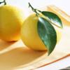 Lemon-Wallpaper-fruit-6334028-1024-768