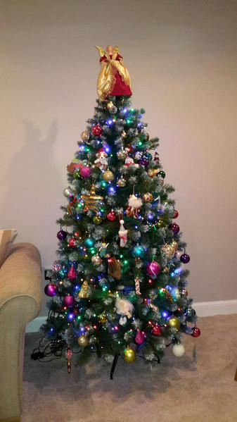 jan 1 tree